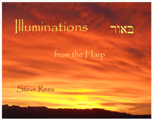 Steve_Rees_Illumination